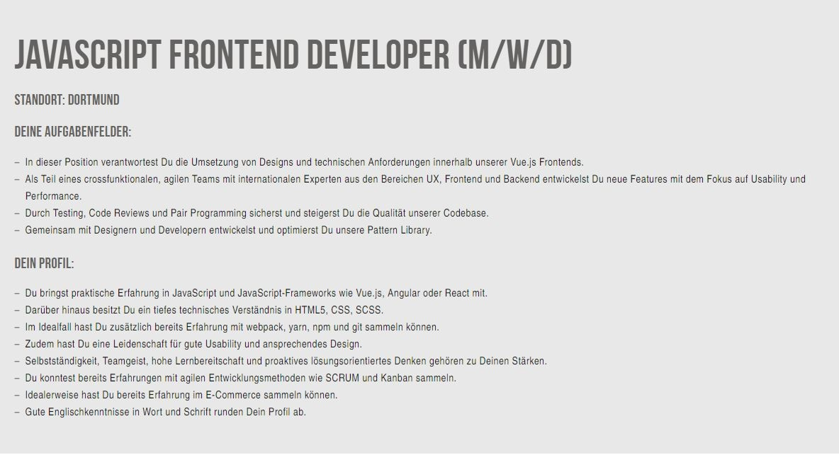 profil-developer